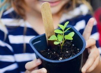 Activités Nature et Developpement Durable